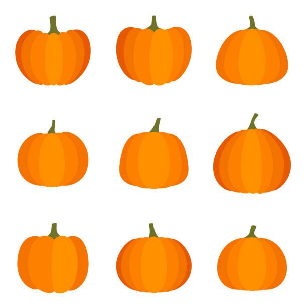 Set of halloween pumpkin on white background, vector illustration Set of halloween pumpkin on white background, vector illustration pumpkin stock illustrations