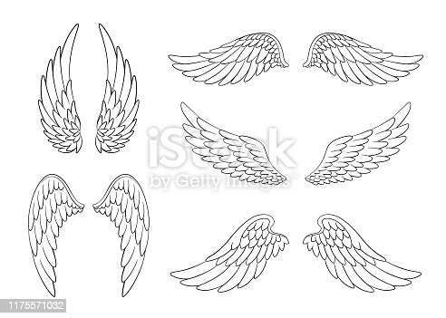 Set of hand drawn bird or angel wings of different shape in open position. Contoured doodle wings set isolated on white background.