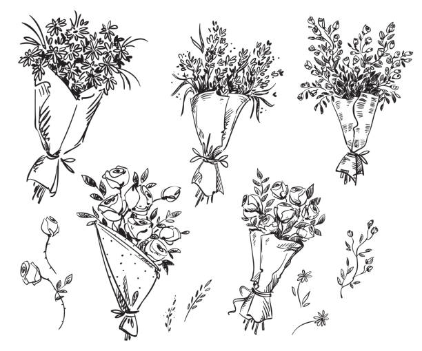 Set of hand drawn bouquets, vector sketch Set of hand drawn bouquets, vector sketch bunch stock illustrations