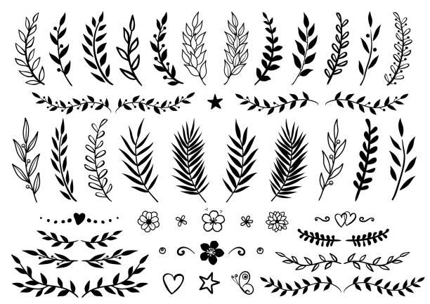set of hand drawn branches and flowers - vine stock illustrations, clip art, cartoons, & icons