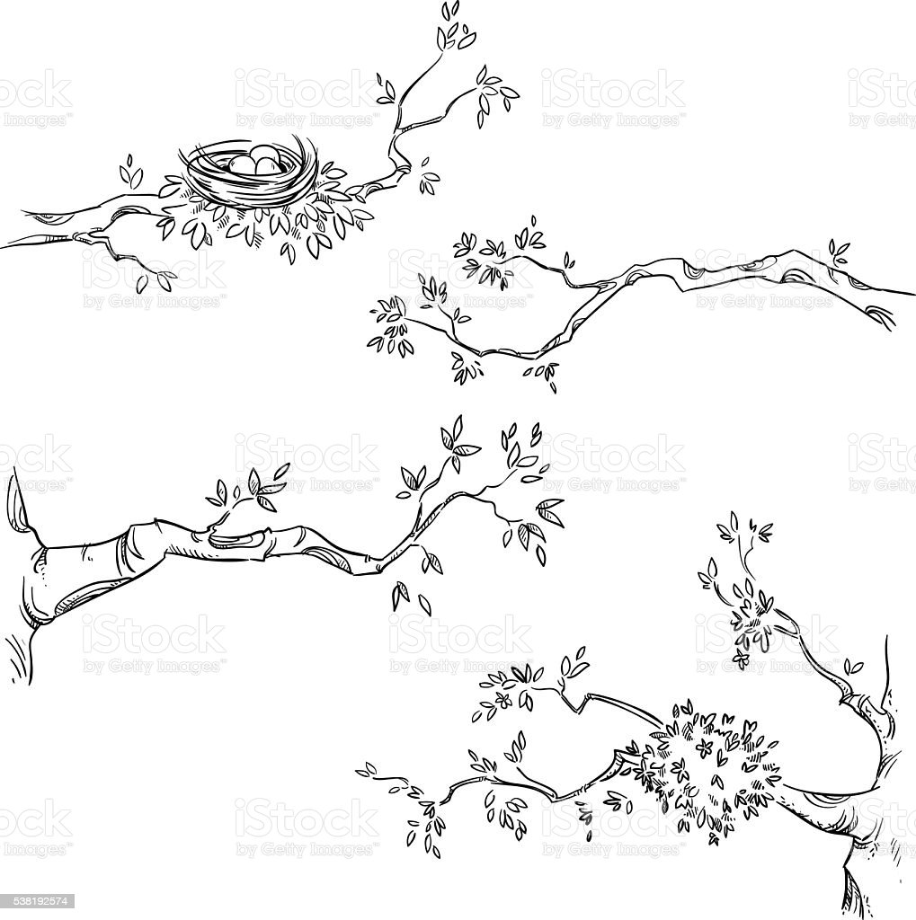 Set of hand drawn branches vector art illustration
