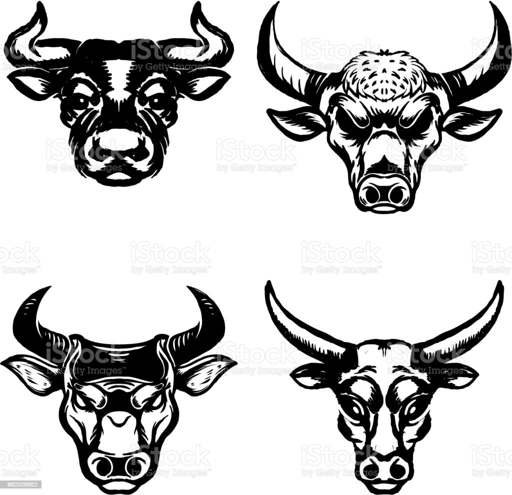 Set of hand drawn bull heads on white background.