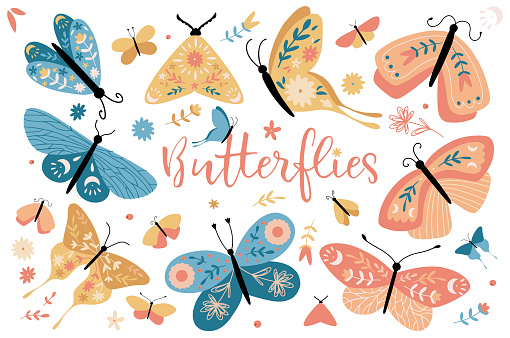 Set of hand drawn butterfly with colorful wings. Collection of colorful butterflies, moths and spring grass or summer garden flowers isolated on white background.