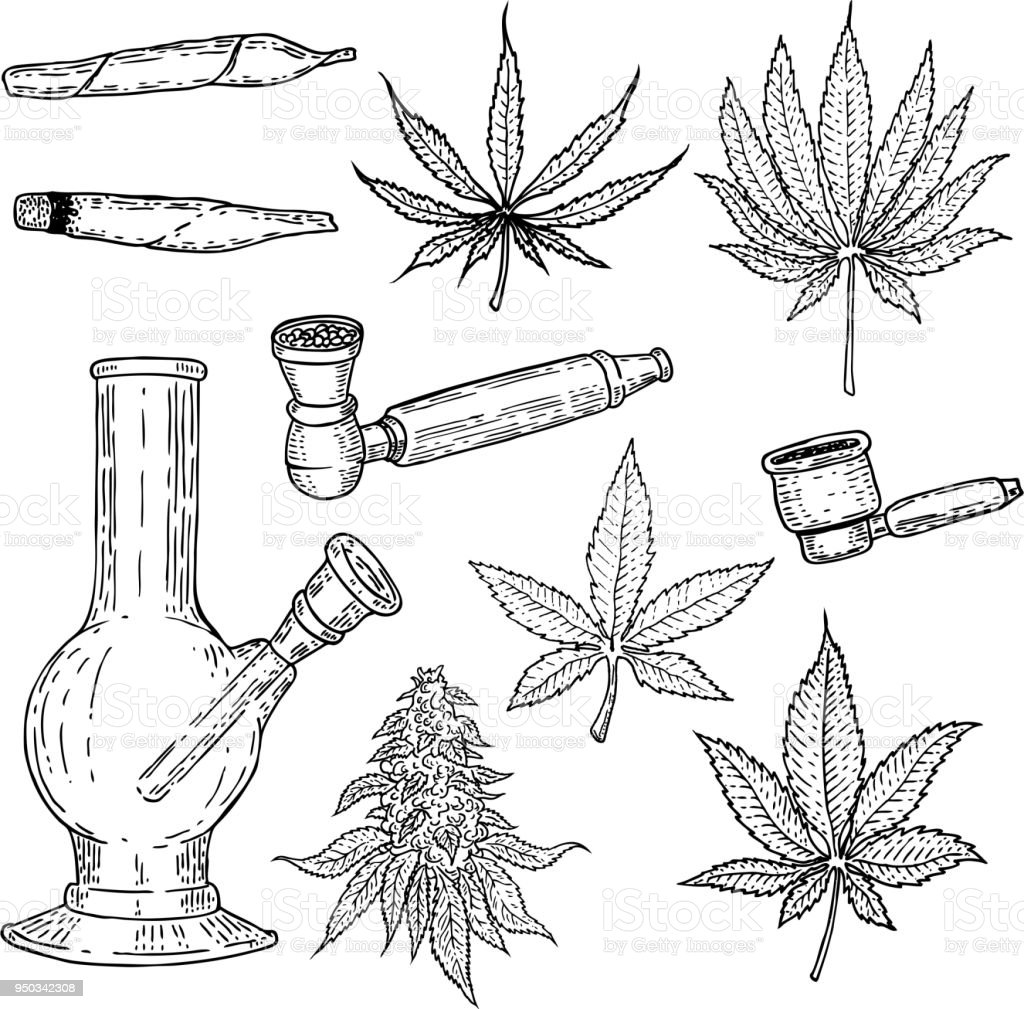 Set of hand drawn cannabis leaves, bong, smoking pipes. Design element for poster, card, banner. vector art illustration