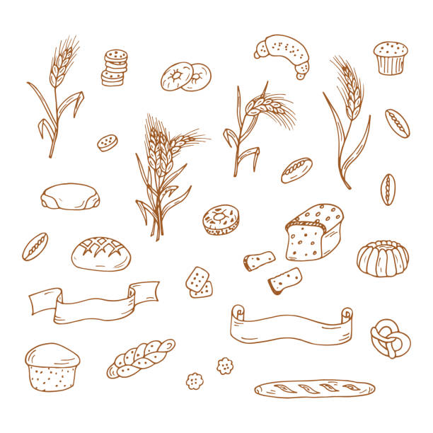 Set of Hand drawn Doodle Bakery, Wheat ears and banners Set of Hand drawn Doodle Bakery, Wheat ears and banners bread drawings stock illustrations