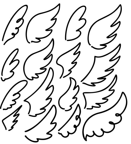 Set of hand drawn doodle wings. Design elements for poster, emblem, sign, label. Vector illustration Set of hand drawn doodle wings. Design elements for poster, emblem, sign, label. Vector illustration animal wing stock illustrations