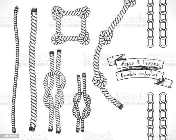 Vector Rope Brush - Download Free Vectors, Clipart Graphics