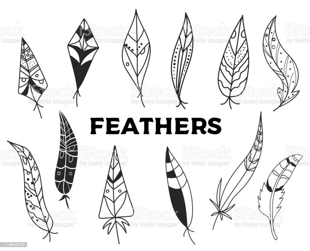 Collection of hand drawn feather. Ink illustration. Isolated on white...