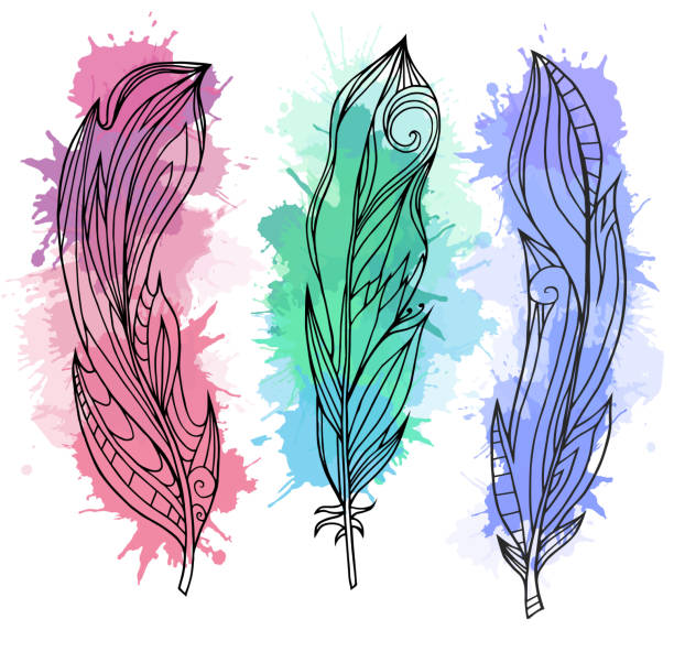 Set of hand drawn feathers with boho pattern Set of hand drawn feathers with boho pattern and watercolor splashes. Tribal doodle elements. Vector element for your creativity. animal markings stock illustrations
