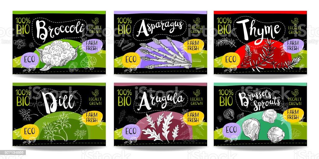 Set of hand drawn food labels, spices labels, fruit labels, vegetable labels vector art illustration