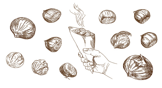 Set of hand drawn illustration. Hand holding grilled whole chestnuts.