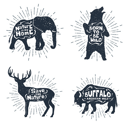 Set of hand drawn labels with animals vector illustrations and lettering.