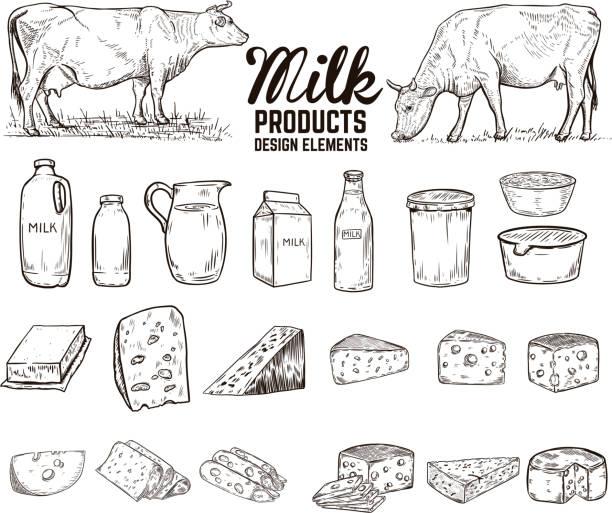 satz von hand gezeichnet-milch-produkte-design-elemente. butter, käse, saurer sahne, joghurt, kühe. für paket, plakat, schild, banner, flyer. - milch stock-grafiken, -clipart, -cartoons und -symbole