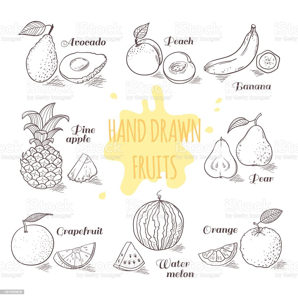 Set of hand drawn outline fruits with slice. Doodle illustration vector art illustration