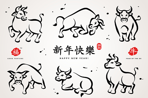 Set of hand drawn Ox