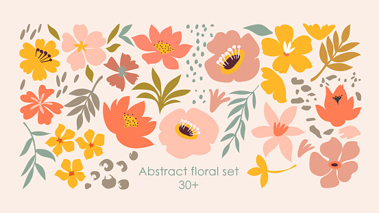 Set of hand drawn shapes and doodle floral design elements. Exotic jungle leaves, flowers and plants. Abstract contemporary modern trendy art. Perfect for posters, instagram posts, stickers.