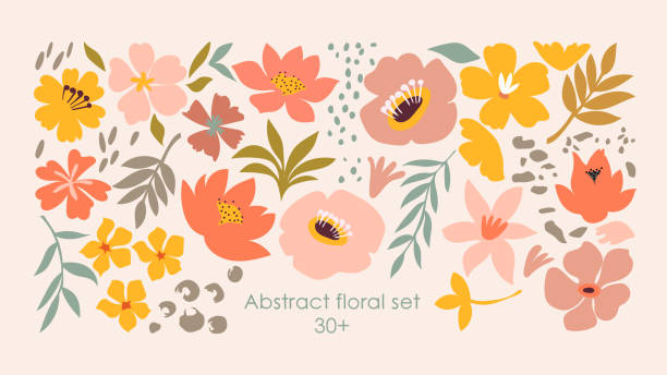 Set of hand drawn shapes and doodle floral design elements. Exotic jungle leaves, flowers and plants. Abstract contemporary modern trendy art. Perfect for posters, instagram posts, stickers. vector illustration flowers stock illustrations