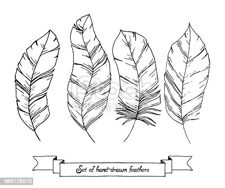 Istock Conjunto De Croquis Dibujado Mano Doodle Plumas Aisladas