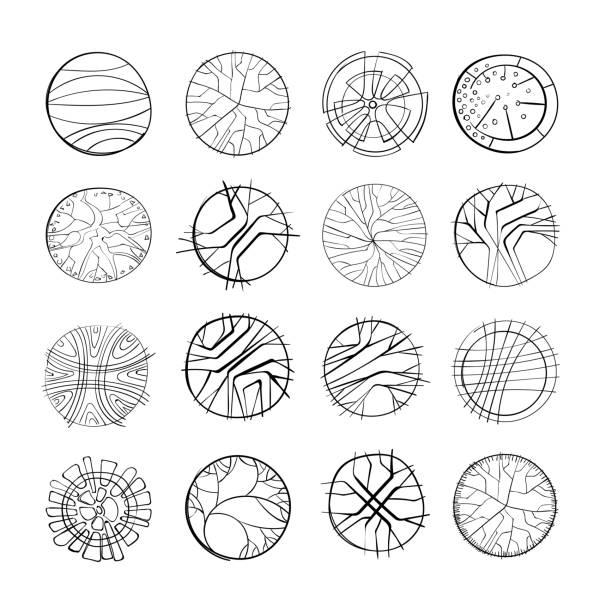 Set von Hand gezogenen Bäumen – Vektorgrafik