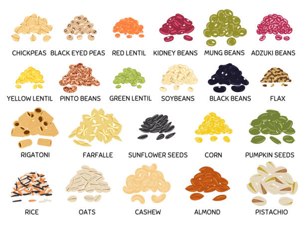 set of hand drawn vector handful of beans, legumes, seeds and nuts - plant pod stock illustrations