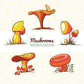 Set of hand drawn vector illustration of edible mushrooms.