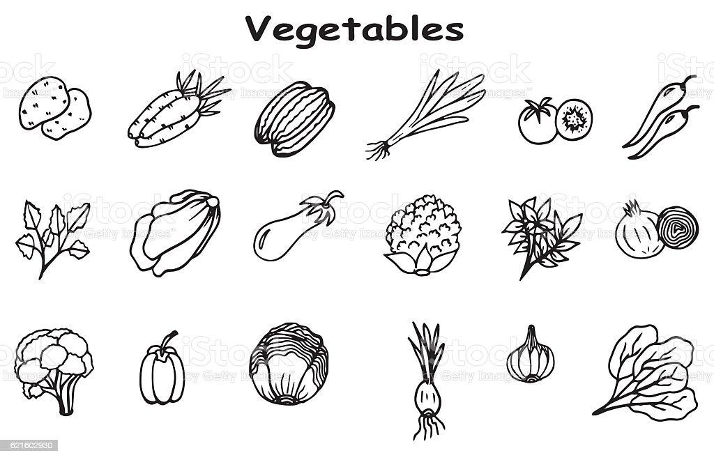 Set of hand drawn vegetables doodles vector art illustration
