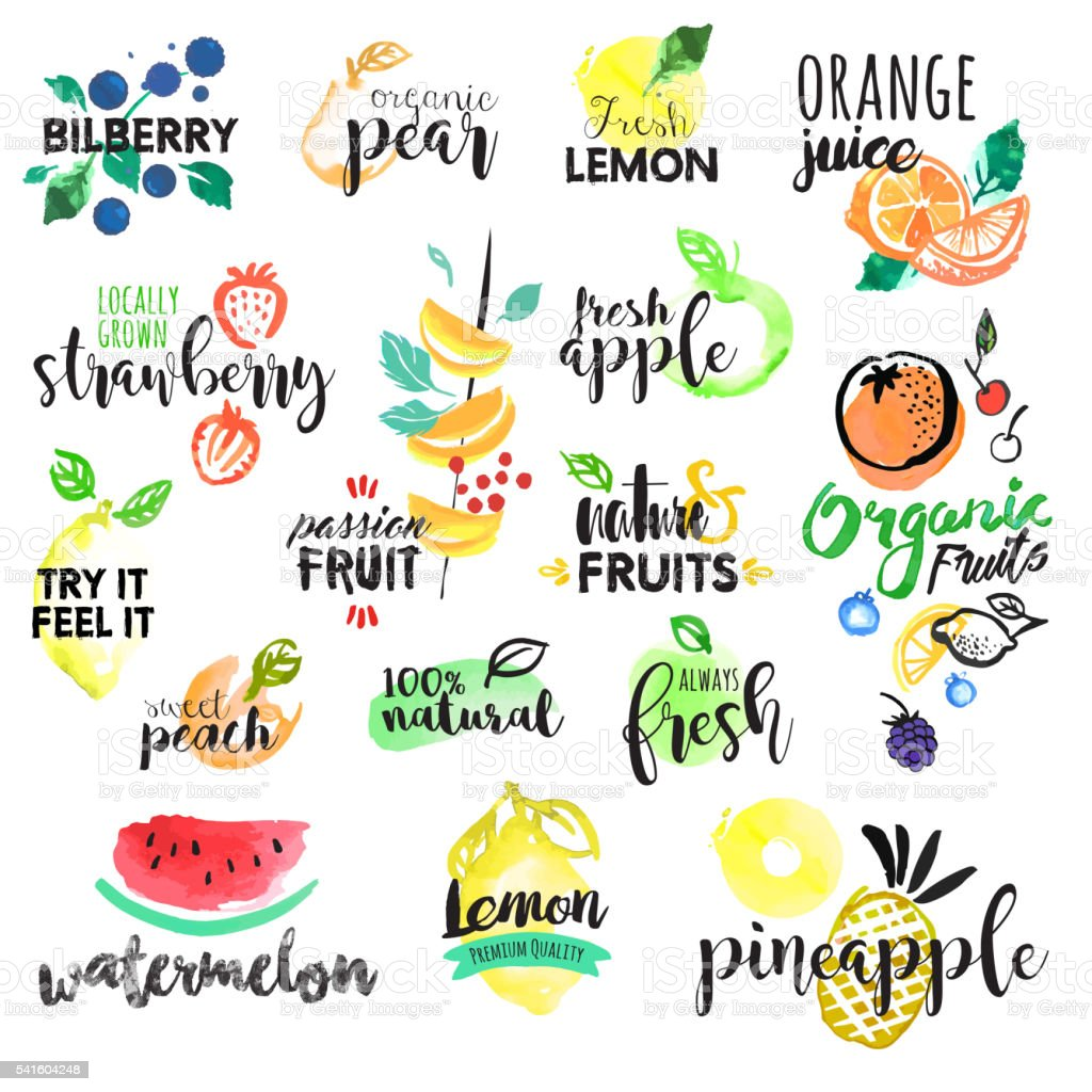 Set of hand drawn watercolor labels and stickers of fruit vector art illustration