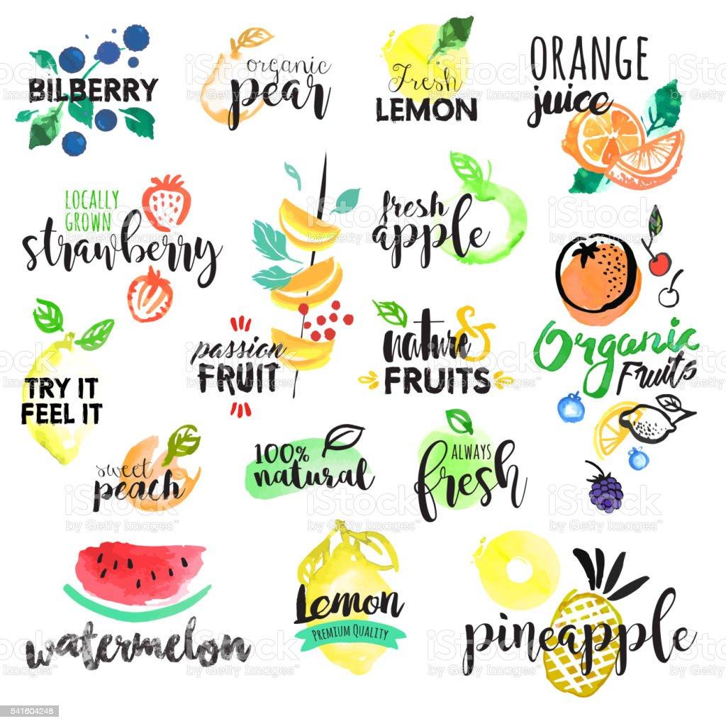 Conjunto de dibujado a mano acuarela etiquetas y pegatinas de frutas - ilustración de arte vectorial