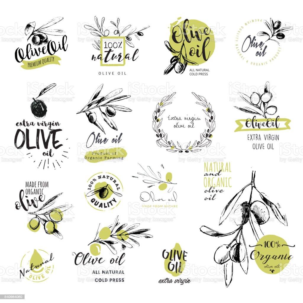 Conjunto de desenhado à mão em Aquarela azeite autocolantes e emblemas - ilustração de arte vetorial