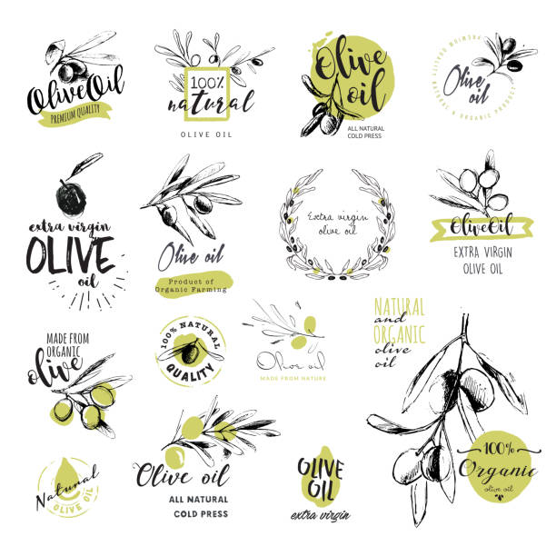 Set of hand drawn watercolor olive oil stickers and badges Set of hand drawn watercolor stickers and badges of olive oil. Vector illustrations for olive oil labels, packaging design, natural products, restaurant olives stock illustrations