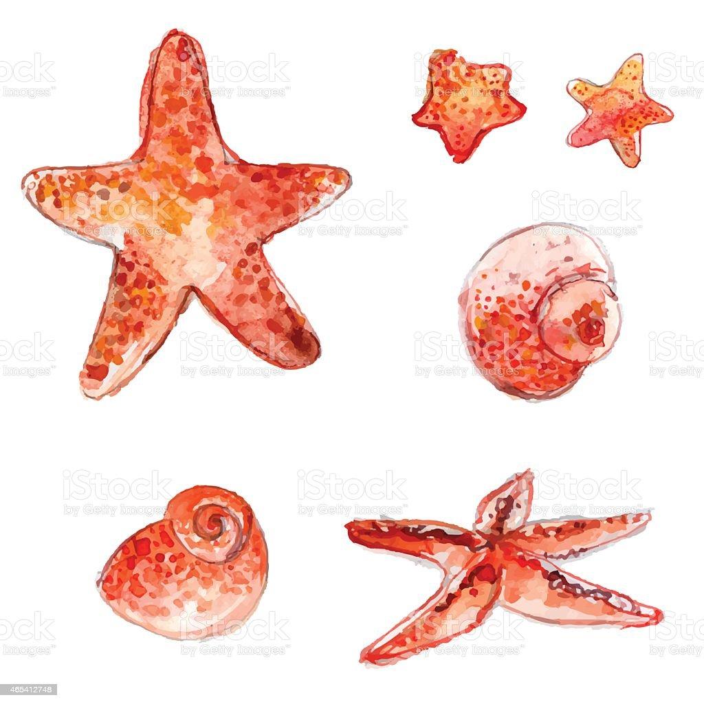 Ilustración de Juego De Dibujo A Mano Acuarela Starfishes Carcasas Y ...