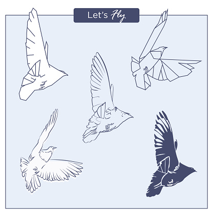 Set of hand-drawn flying pigeons in different styles, as free hand sketch, poligonal geometric and solid shapes