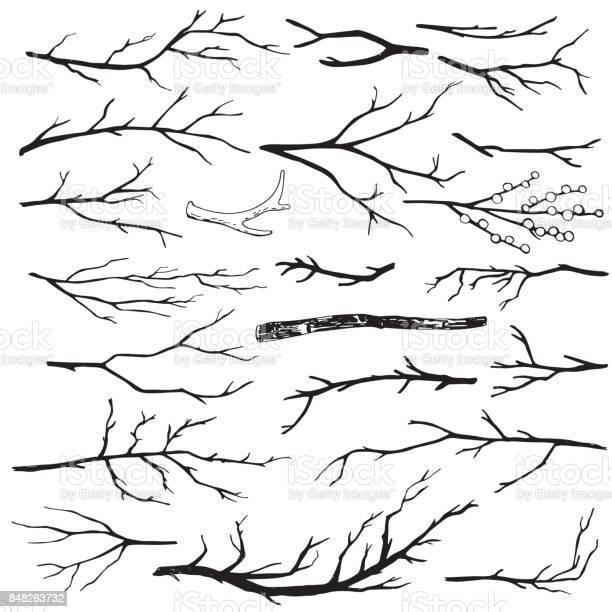 Set of handdrawn wood branches vector id848263732?b=1&k=6&m=848263732&s=612x612&h=aenmw0ryhzd9wb3uoii18msfhejiz8kurilvpn vah0=