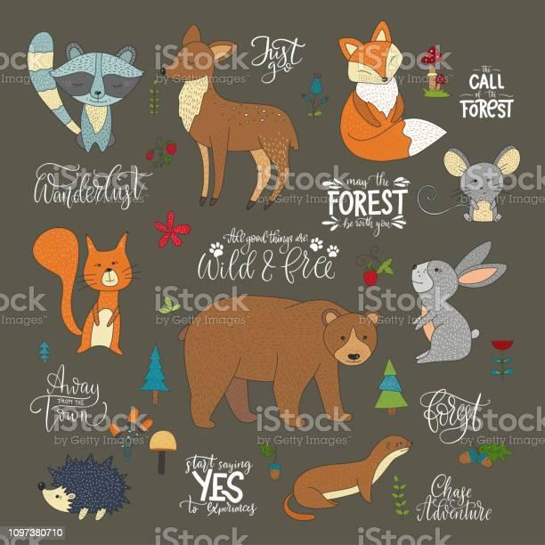 Set of hannddrawn cute forest animals and lettering quotes vector id1097380710?b=1&k=6&m=1097380710&s=612x612&h=8iivjt7i3awapqbpgzusoicjlqzwm7u u50zbqptm60=