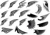 Set of heraldic bird wings