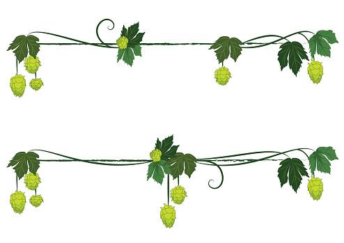 set of hop dividers