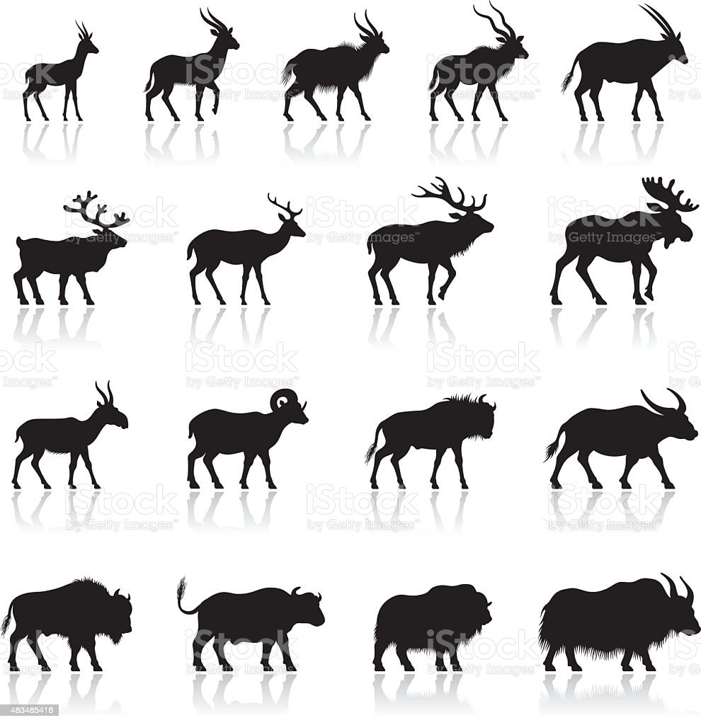 Set of Horned Animal Silhouettes