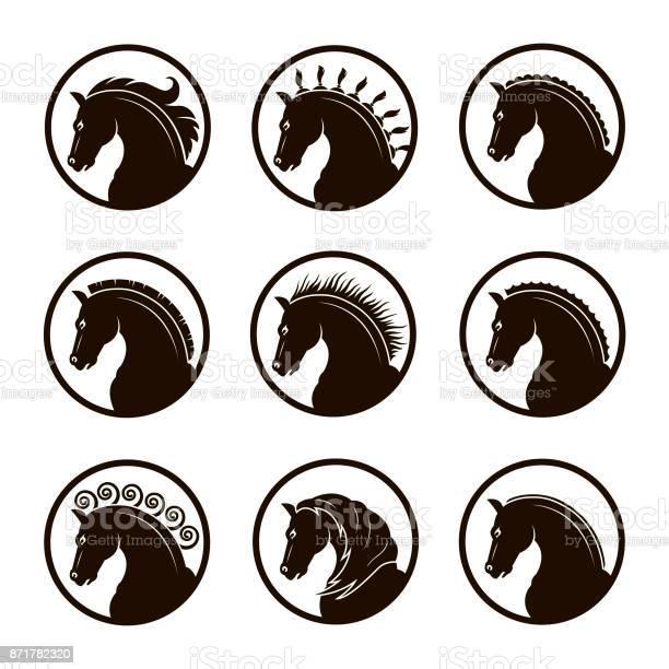 Set of horse heads vector id871782320?b=1&k=6&m=871782320&s=612x612&h=n5pn  mbnskrsqjnppgxyfnn9tvlofgngm9utv9r2gw=