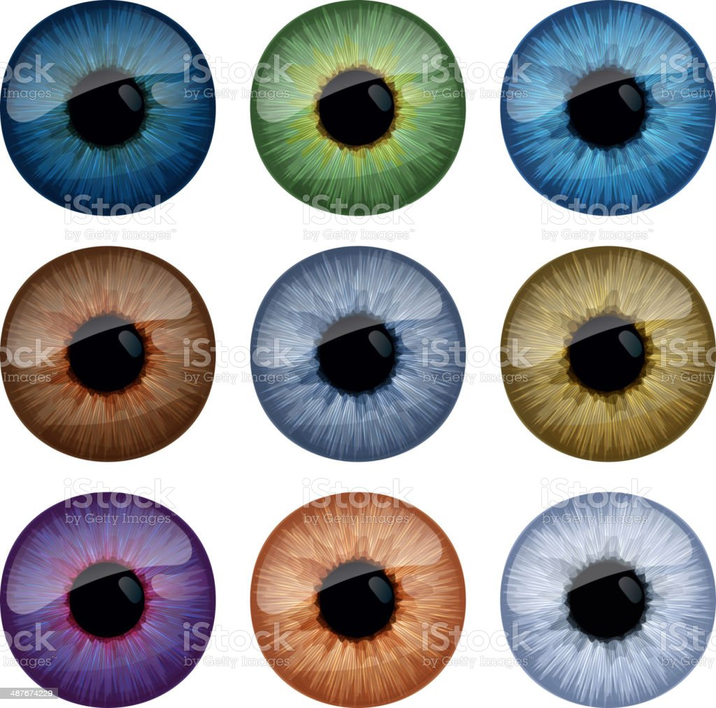 Set of human eyes iris isolated on white background. vector art illustration
