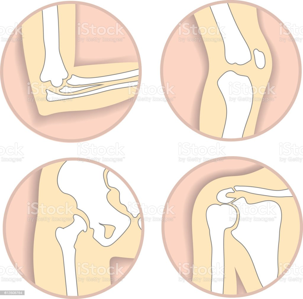 Set of human joints, elbow, knee, hip and shoulder joint vector art illustration