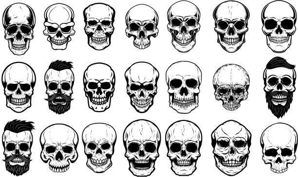 satz von menschlichen schädel illustrationen auf weißem hintergrund. gestaltungselement für label, wahrzeichen, zeichen, poster. - totenkopf tattoos stock-grafiken, -clipart, -cartoons und -symbole