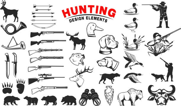 Set of hunting design elements. Hunting dogs, weapon, shooters silhouettes. Deer, bears, wild ducks. Design elements for emblem, sign, label, badge. Vector illustration Set of hunting design elements. Hunting dogs, weapon, shooters silhouettes. Deer, bears, wild ducks. Design elements for emblem, sign, label, badge. Vector illustration water bird stock illustrations