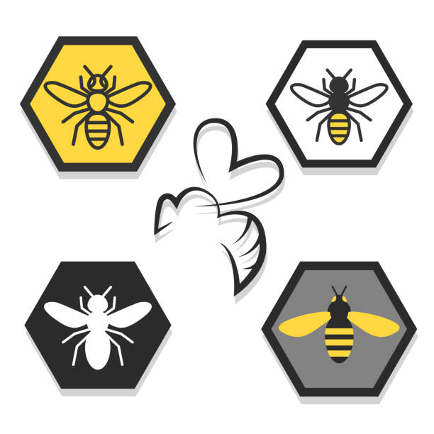 set of icons of bees A set of icon or icons with bees or wasps, apiaries, honey queen bee stock illustrations