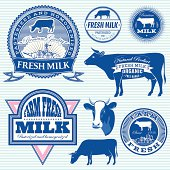 set of vector icons on the theme of cow's milk