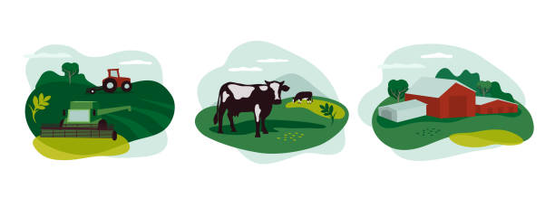 Set of icons with agriculture, livestock and farming Set of vector icons about agriculture occupation, livestock. Illustration of tractor and combine harvester on field, farming landscape, farm animals and agricultural building, scenery of countryside. agricultural cooperative stock illustrations