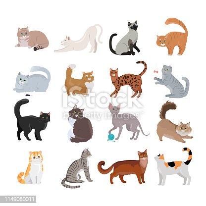 9 090 Fluffy Cat Illustrations Clip Art Istock