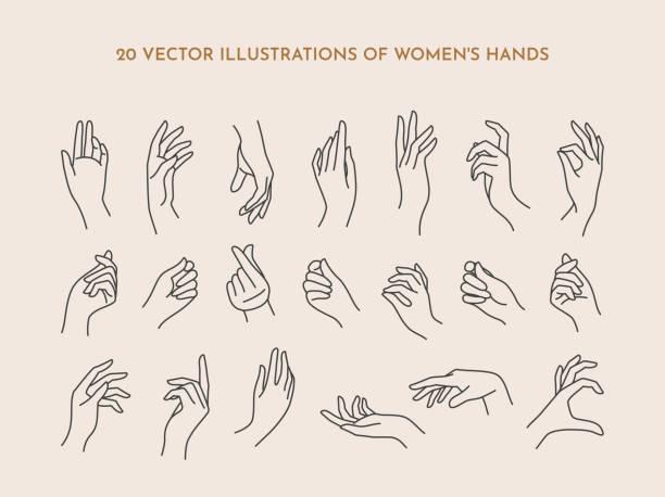 stockillustraties, clipart, cartoons en iconen met een set iconen vrouwen handen in een trendy minimale lineaire stijl. de illustratie van de vector van vrouwelijke handen met diverse gebaren - menselijke ledematen