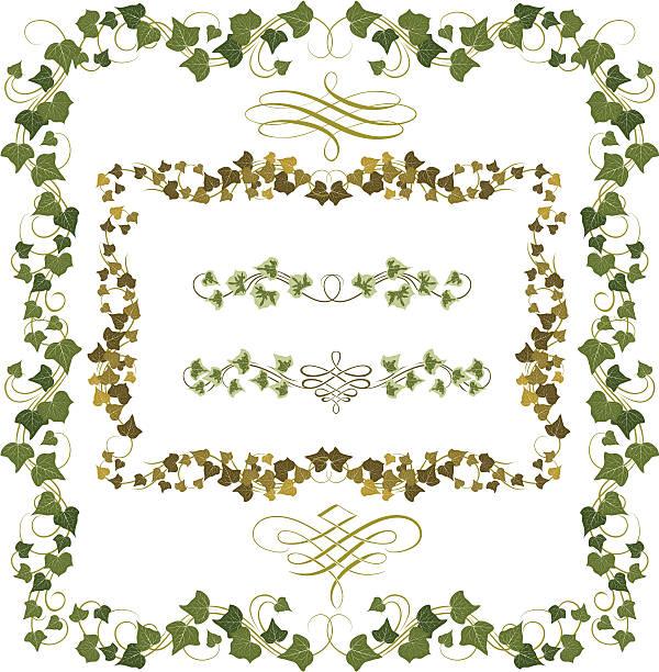 stockillustraties, clipart, cartoons en iconen met set of illustrated ivy frames or borders - klimop