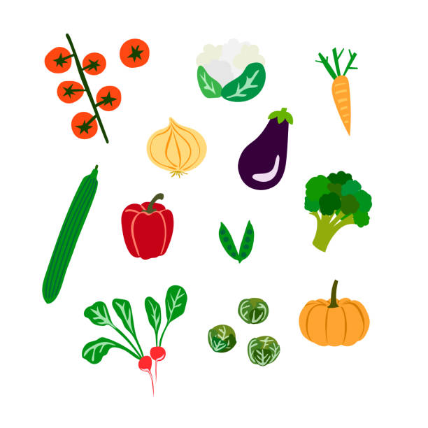 Set of illustrated vegetables vector art illustration
