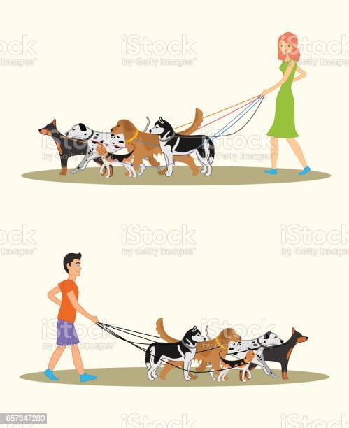 Set of illustration with a man and a woman walking many dogs vector id657347280?b=1&k=6&m=657347280&s=612x612&h=a72iz4mkwqpuk6 er60rrctfmdxstnbebfl6lutcutm=